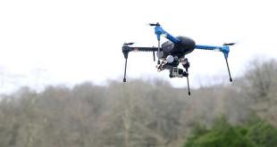 Ζήνα και Ερμής – Τα δύο γεράκια που εκπαιδεύει Έλληνας αστυνομικός για να καταρρίπτουν drones! Δείτε τα εν δράσει σε video