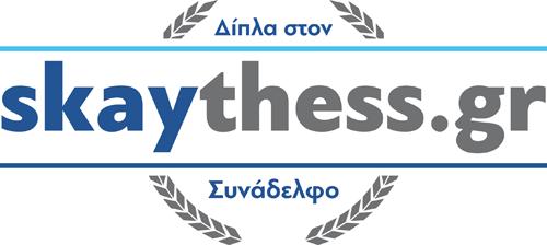 logo_skay2